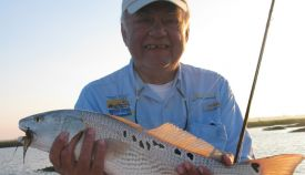 redfish-10.jpg
